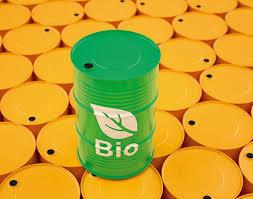 """La """"alternativa"""" extractivista del biocombustible"""