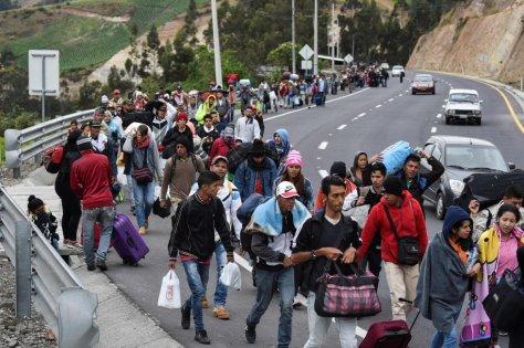 Migrantes 4