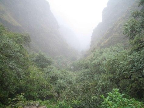 RESERVA-NATURAL-DE-TARIQUIA-TARIJA