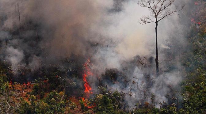 La Amazonia y el Chaco arden