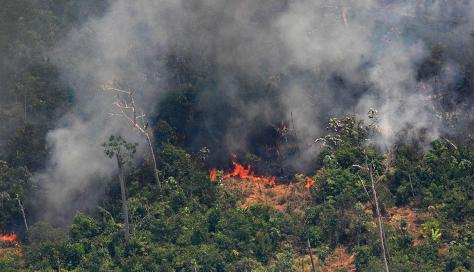 Incendio en la Amazonia 2